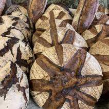 Pains à la farine de blés anciens