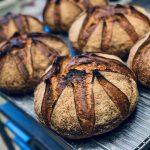 Blés anciens de population biologique, plus de 80 sortes de blés de variétés anciennes compose cette farine grand cru écrasée à l'ancienne sur meule de pierre, fermentation longue de 48h pour une meilleure digestibilité et un maximum d'arômes. Un goût exceptionnel.