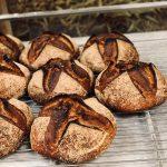 Grand épeautre biologique, farines écrasées à l'ancienne sur meule de pierre. Fermentation longue de 48h et panifié au levain naturel, pour une meilleure digestibilité et un maximum d'arômes.